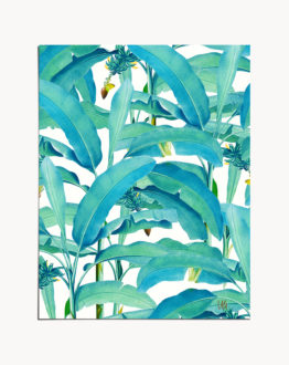 Shop the 'Banana Forest' tropical botanical modern illustration art print signed by artist Uma Gokhale 83 Oranges 16 x 20