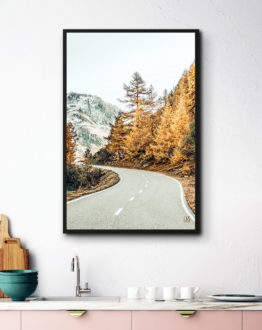 Shop Snow and Golden Pine nature wildlife modern boho photography Art Print by artist Uma Gokhale 83 Oranges unique artist-designed wall art & home décor
