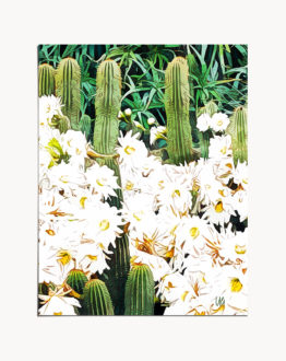 Shop Cactus & Bloom, Botanical Jungle Painting, Bohemian Nature Art Print by artist Uma Gokhale unique artist-designed wall art & home décor